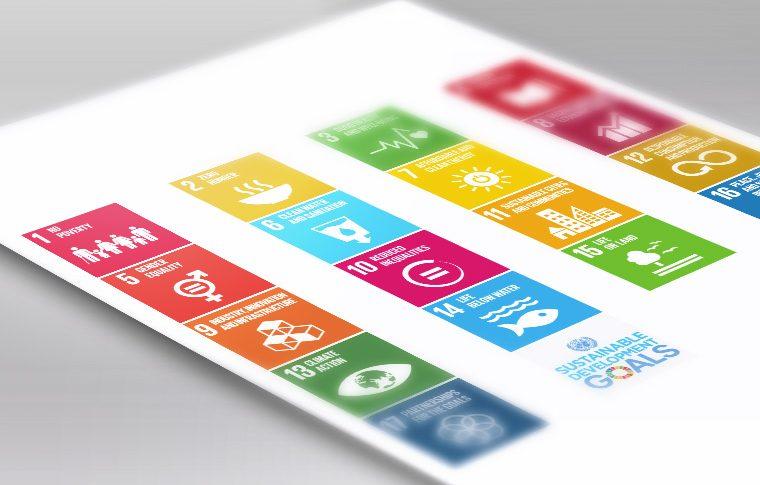 Informe Anual sobre los Objetivos de Desarrollo Sostenible